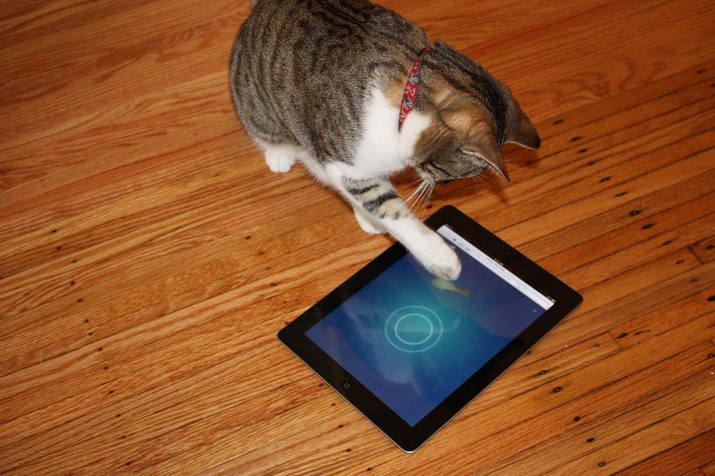 jeux-ipad-chat
