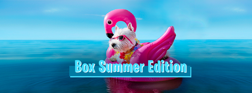 woufbox_summer_edition