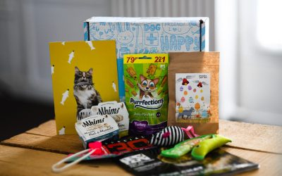 UNBOXING MIAOUBOX : Box Poisson-chat d'Avril