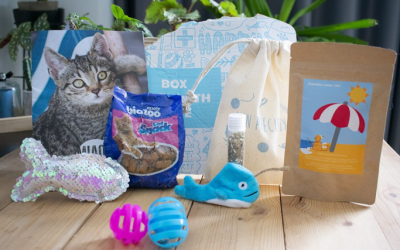 Miaoubox de Juin : la box Summer Edition pour chats !