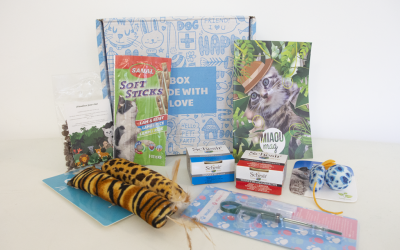 Unboxing Miaoubox : Jungle Juillet 2020