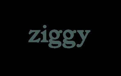 Ziggy, la marque de pâtées pour chats saine, engagée et transparente !