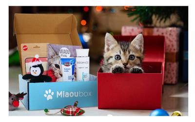 Un cadeau idéal à offrir à vos proches pour Noël