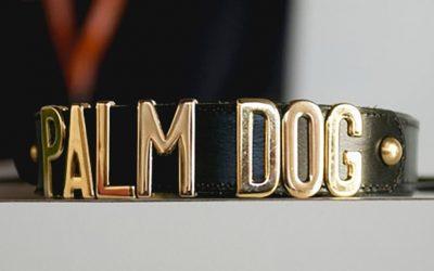 Les chiens-acteurs qui ont marqué l'histoire du cinéma
